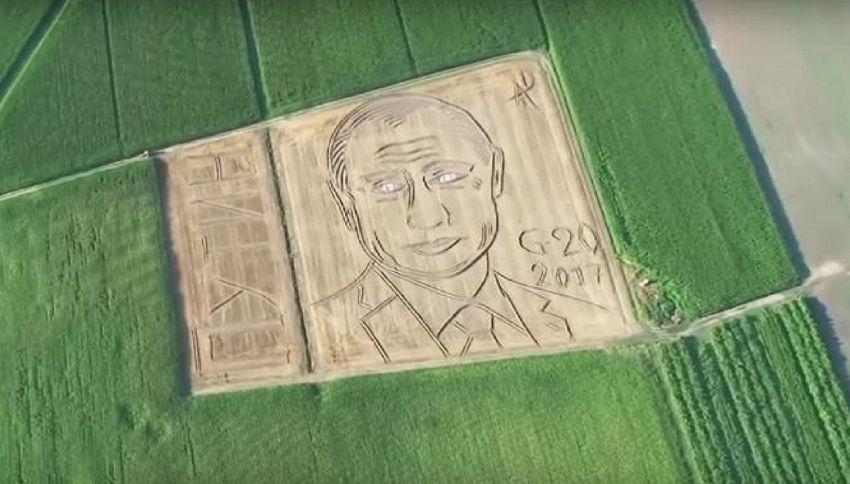 Veneto, su un campo di grano spunta il ritratto gigante di Putin