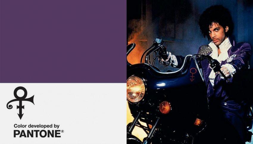 Creato un nuovo colore in ricordo di Prince: ecco com'è