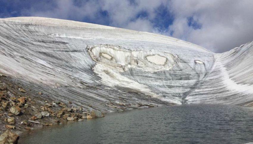 Sondrio, sul ghiacciaio compaiono due enormi gufi