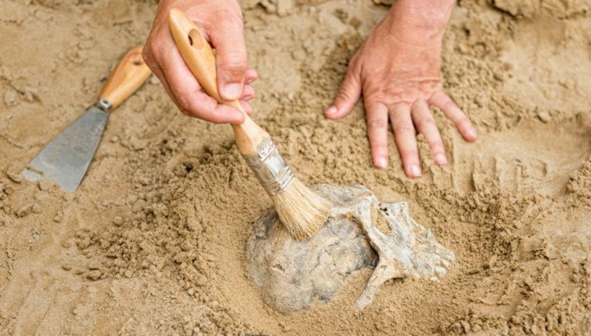 Preistoria, analizzati i denti di un feto di 27mila anni fa