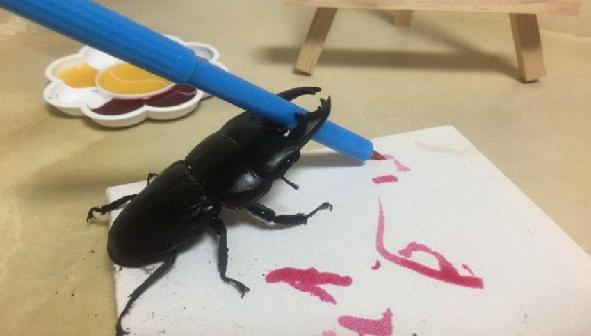 Vi presentiamo Spike, lo scarabeo artista