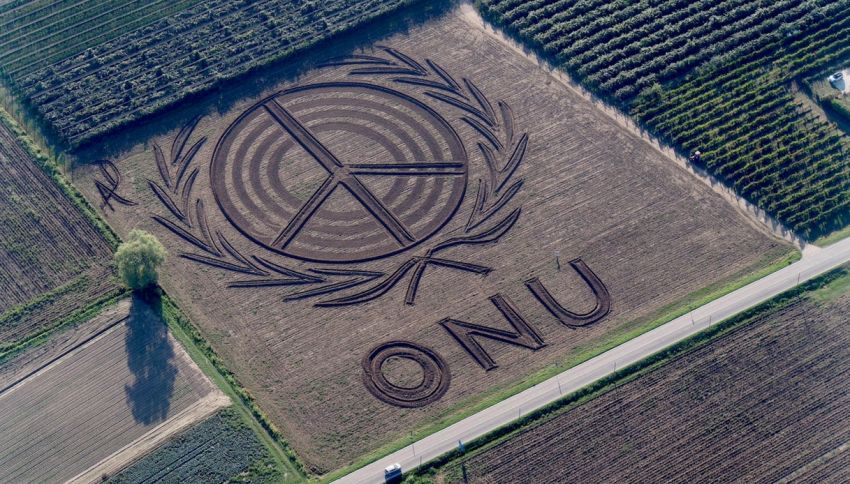 """Nel campo di grano c'è la scritta gigante """"ONU"""", che significa?"""
