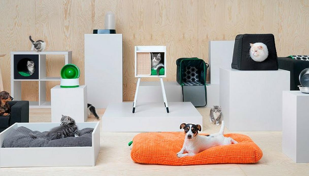 Ikea lancia la linea per cani e gatti: si chiama Lurvig