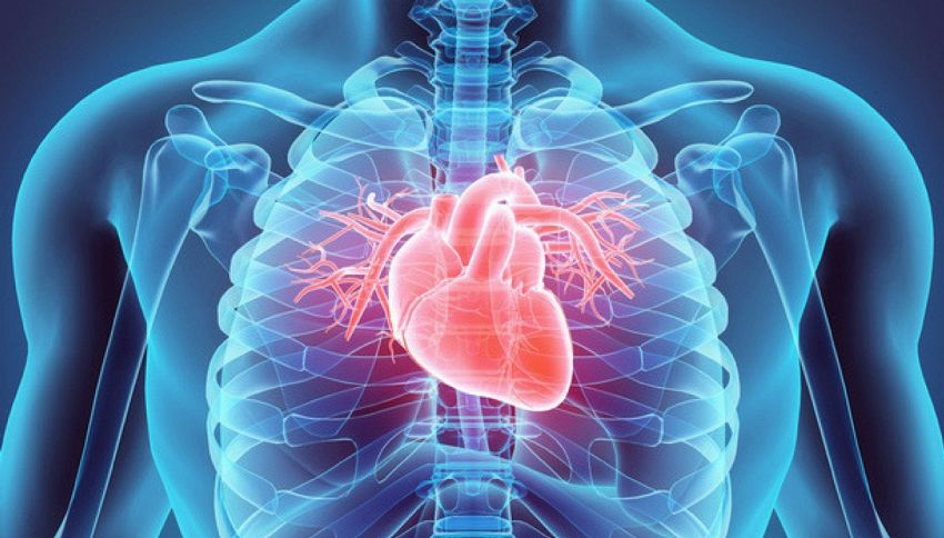 Basta impronte, in futuro saremo identificati con il cuore