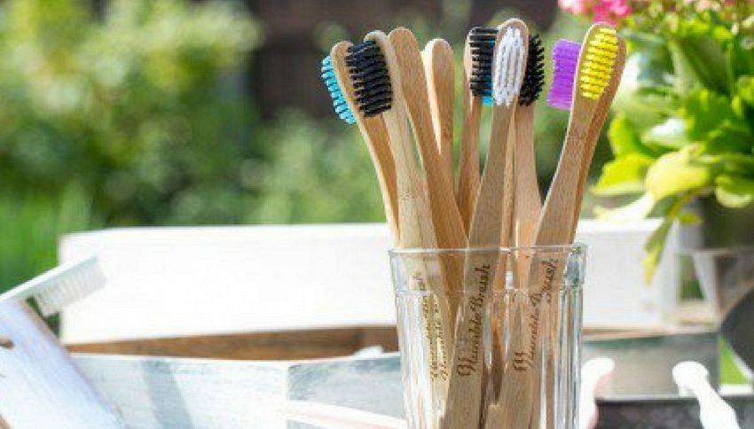Arrivano gli spazzolini 100% biodegradabili