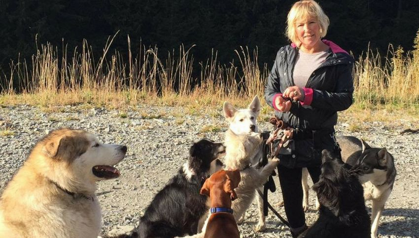 Donna ferita nel bosco, viene soccorsa e aiutata dai suoi cani