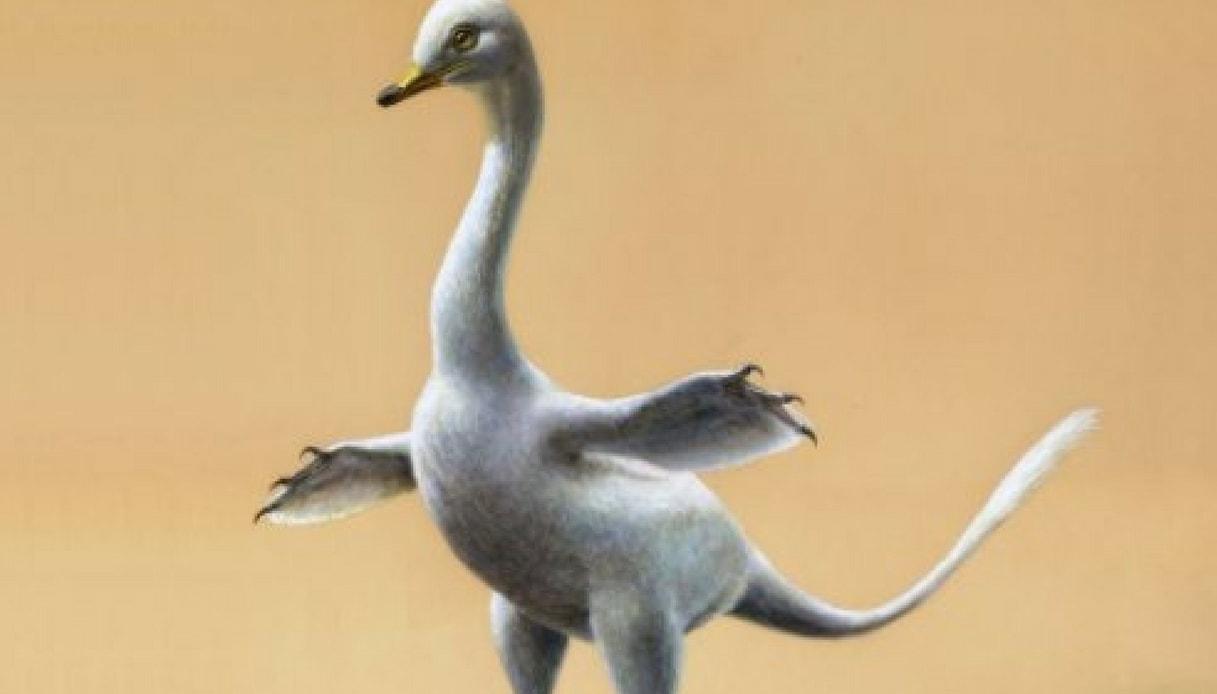 Metà papera metà dinosauro, scoperta nuova specie in Mongolia