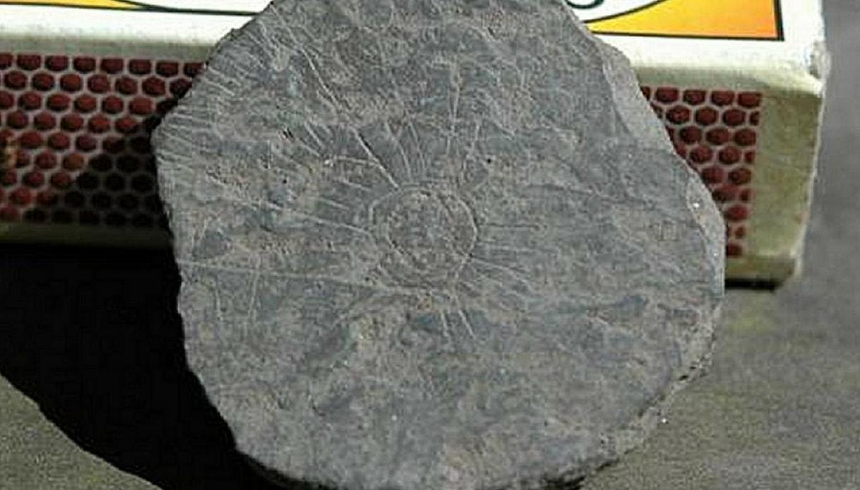 Il mistero delle pietre incise 5mila anni fa