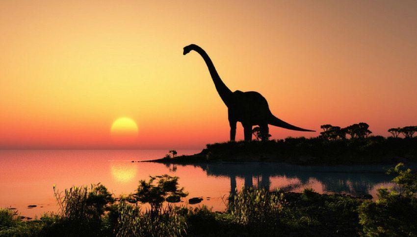 Scoperta lastra fossile con le orme di 70 dinosauri