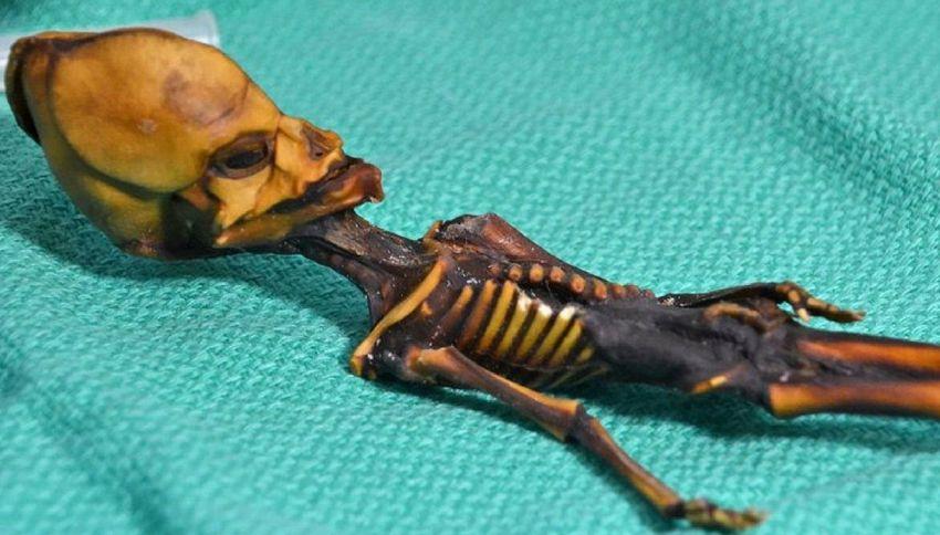 """Svelato il mistero di Ata, lo scheletro """"alieno"""""""