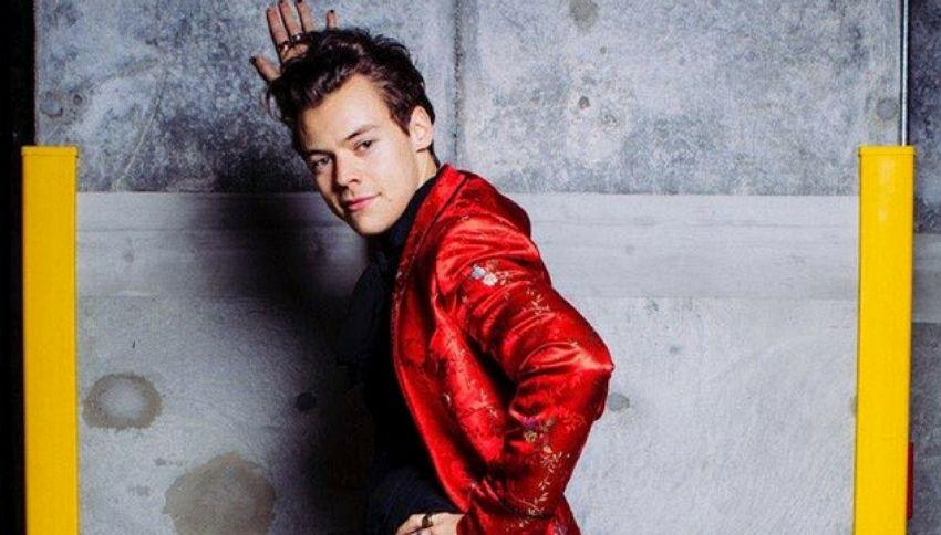 Harry Styles è bisessuale? Ecco la prova (secondo i fan)