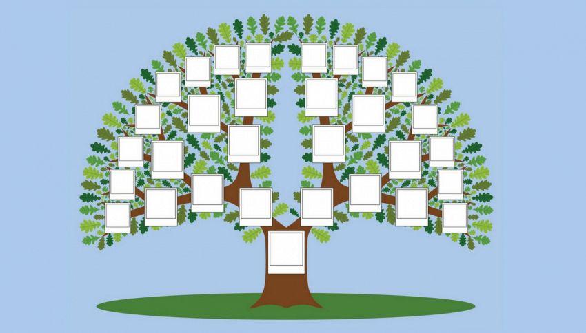 Realizzato l'albero genealogico digitale più grande del mondo