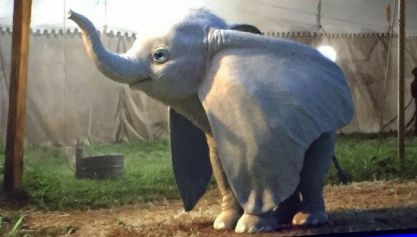 """La Disney svela le prime immagini di """"Dumbo"""" di Tim Burton"""