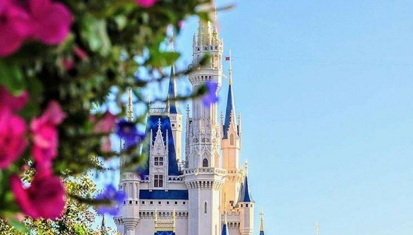 Ecco perché a Disney World non ci sono insetti