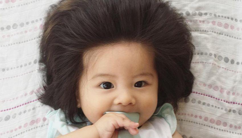 Baby Chanco ha solo sei mesi e molti più capelli di te
