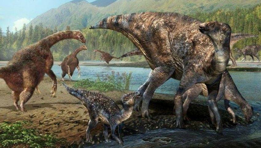 """I dinosauri avevano """"un'autostrada"""" che collegava Asia e America"""