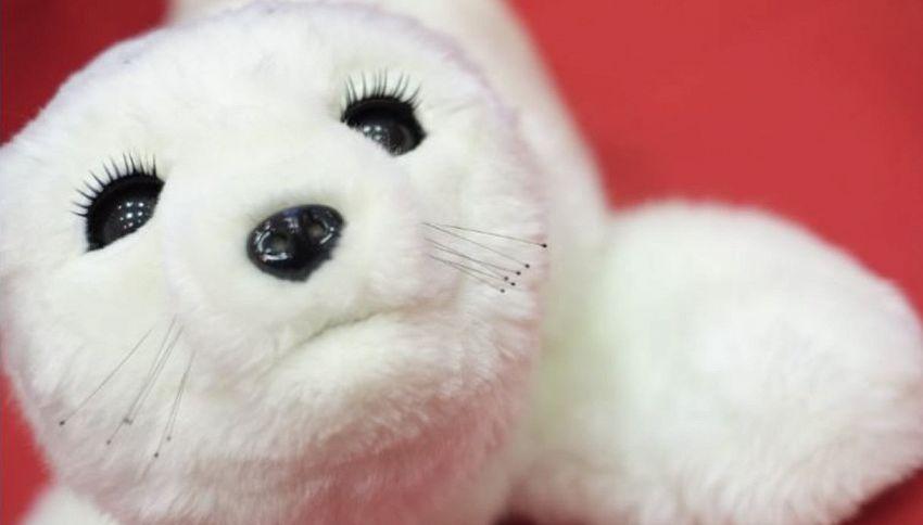 La foca giapponese che aiuta chi soffre di depressione