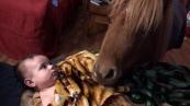 Un baby sitter speciale per il bambino