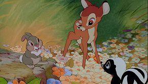 """Un bracconiere è stato condannato a guardare il film """"Bambi"""""""