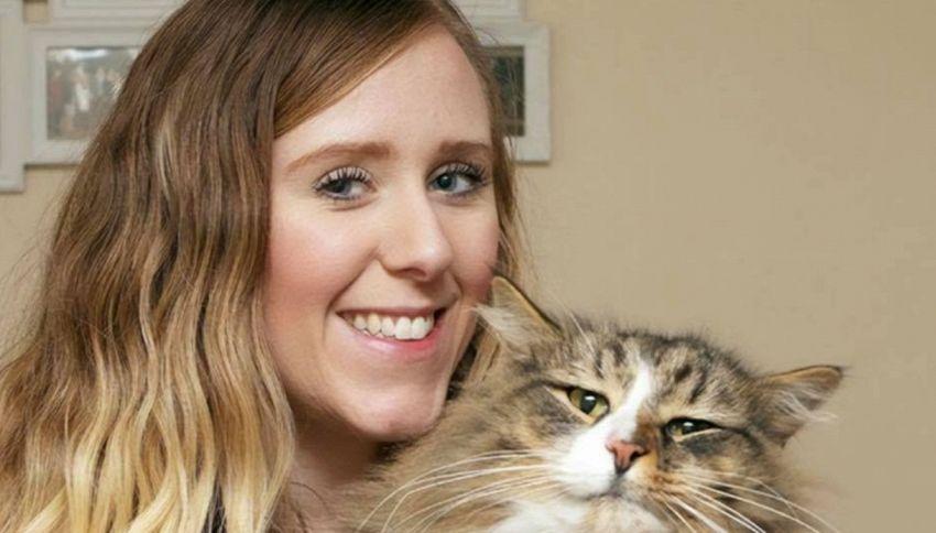 Ritrova il gatto perduto dopo 14 mesi: era alla fabbrica di cibo