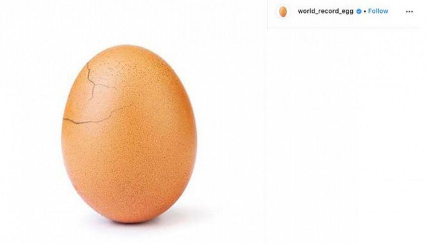 Sorpresa: l'uovo record di Instagram si sta schiudendo