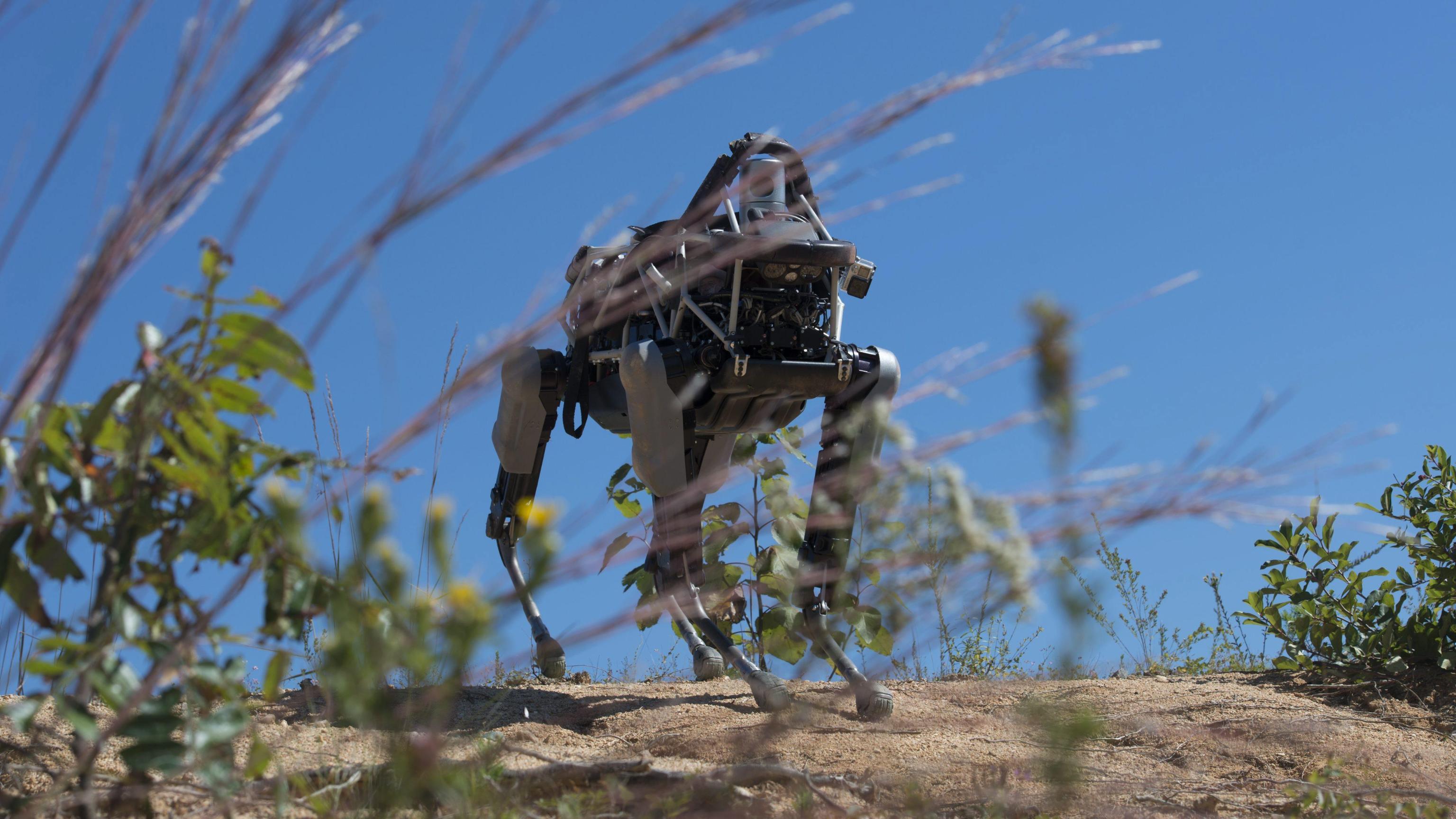 Boston Dynamics svela un cane robot